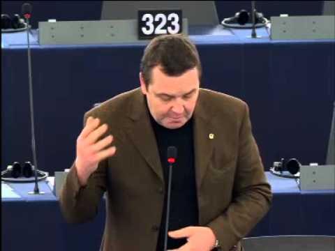 Mark Demesmaeker over EuroMaidan-protesten Oekraïne EP_Plenaire_14_01_2014