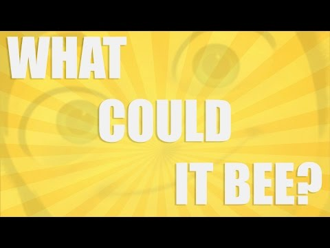 What Could It Bee?
