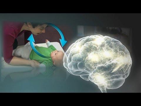 2. Serve & Return Interaction Shapes Brain Circuitry