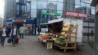 Торговля овощами. Обзор моего места торговли.