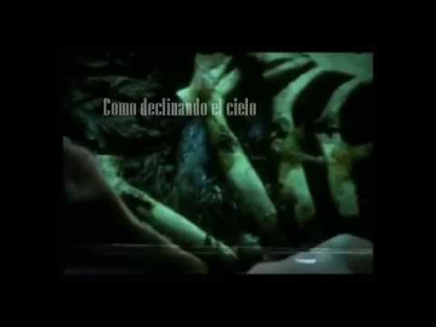 Deadsy - Seagulls (The Macroproposus) subtitulada al Español