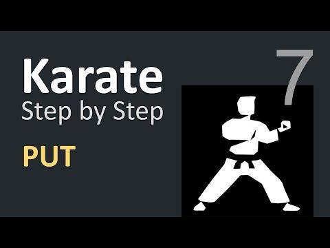 Karate Beginner Tutorials 7 | PUT API Demo