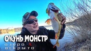 Трофейный окунь монстр на спиннинг озеро Х часть3