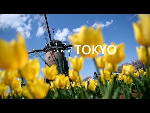 7-days-in-tokyo
