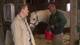 Kentucky Race Horse Farm