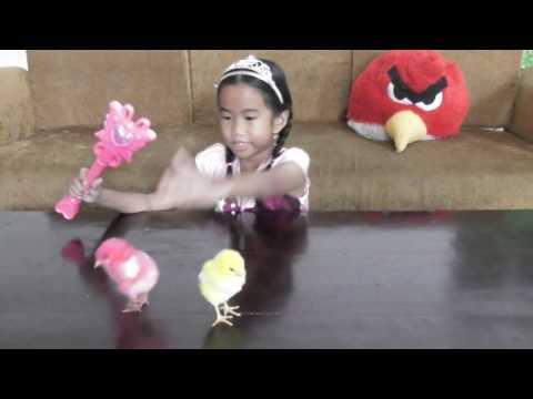 Play With Magiccolorful Baby Chicks Become Alive Anak Ayam Warna