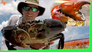 Mud Crabs with Barramundi Catch n Cook Smoker in Bush Kitchen EP.428