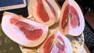 ПОМЕЛО-фрукт...полезные свойства...usa.Spokane.13.