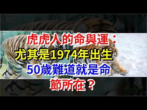 虎虎人的命與運:尤其是1974年出生,50歲難道就是命節所在?,[星座運勢大全]