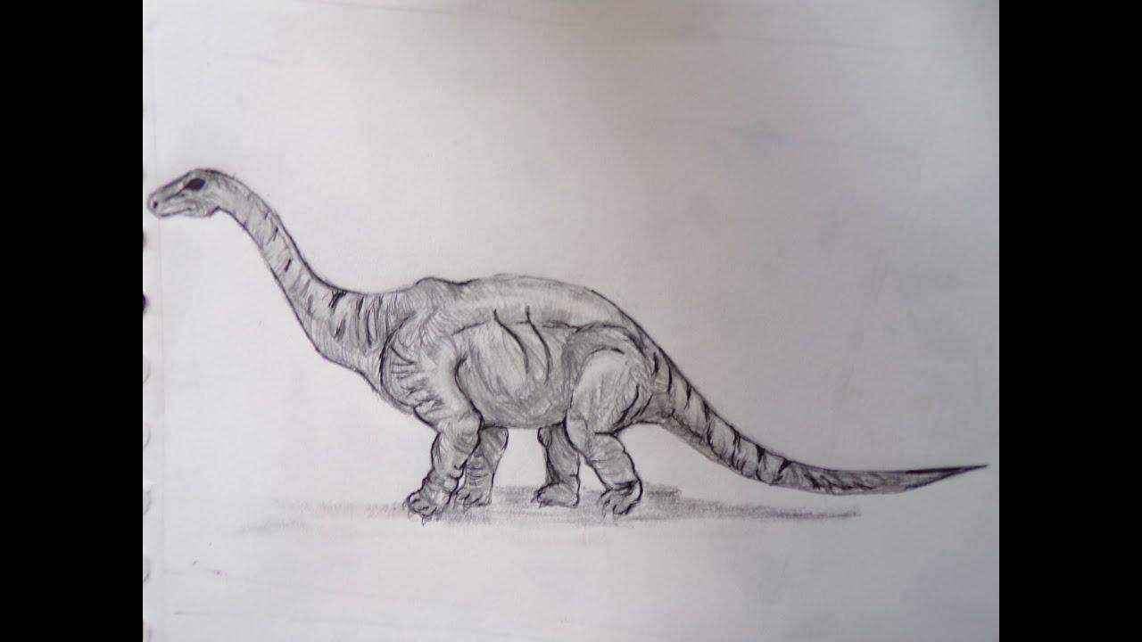 Dessin dessine moi un diplodocus youtube - Dessin diplodocus ...