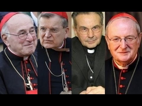 DUBBIA Full text of 4 cardinals' letter to Pope Francis FIRST PART