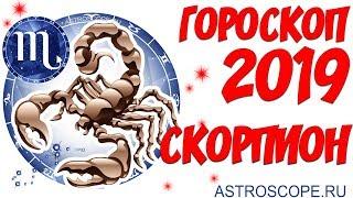 Гороскоп на 2019 год Скорпион: гороскоп для знака Зодиака Скорпион на 2019 год