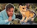 Does the Thylacine Still Exist?