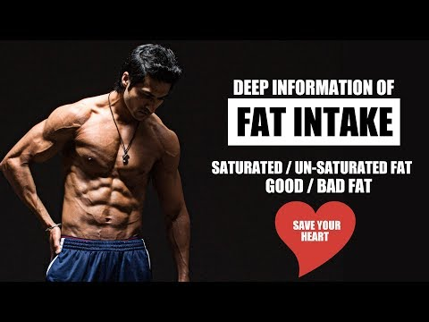 Deep Information of FAT Intake | Saturated &...