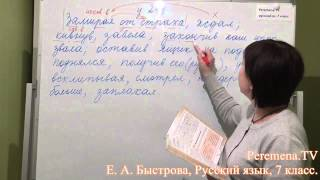 Peremena TV Русский язык, Быстрова, № 241