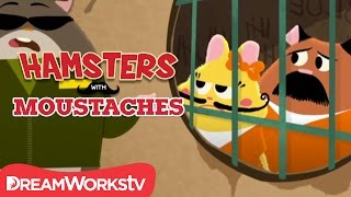 Prison Break | HAMSTERS WITH MUSTACHES