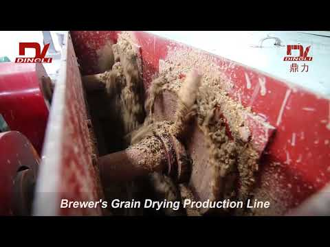 Brewer's Spent Grain Rotary Dryer for Sale