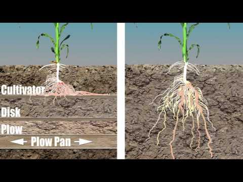 Принципы вертикальной почвообработки