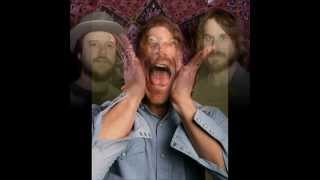 Todd Snider and Hard Working Americans (Live) - Come From The Heart