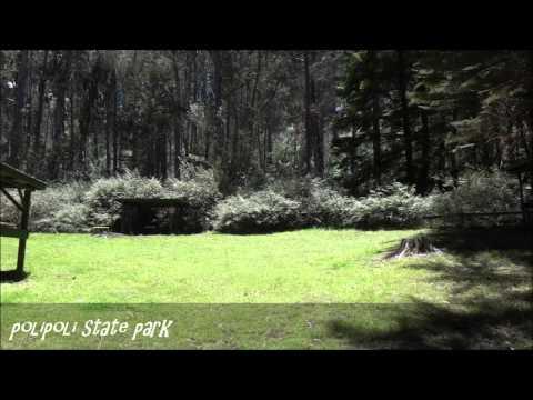 Polipoli Spring State Recreational Park