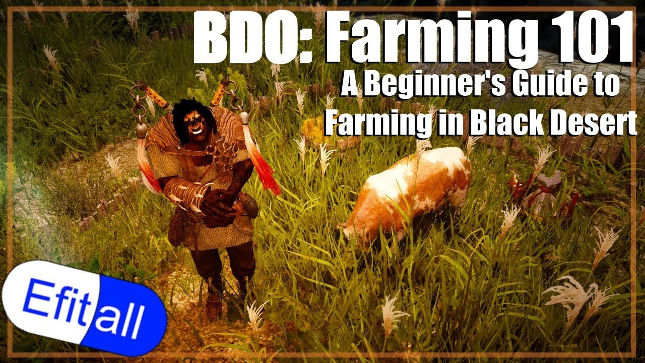 BDO 101: A Beginner's Guide to Farming in Black Desert Online - Updated!