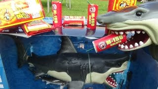 sharks unboxing shark toy animal planet mega great white orca killer whale
