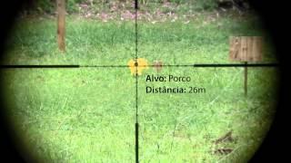 Hunter Field Target Training