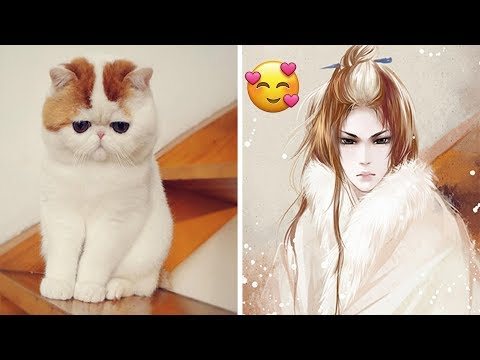 Chinese Artist Creates Human Version Of Cats And Dogs, And The Result Is On Point