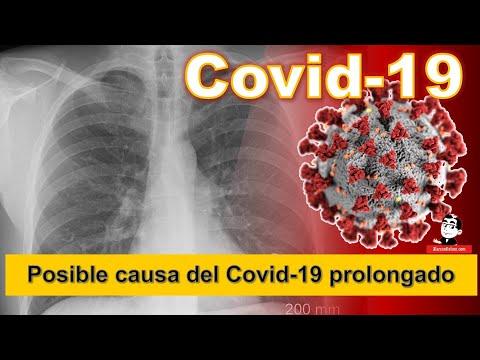 Encuentran posible causa del Covid-19 prolongado ☣ Cifras de la Pandemia COVID-19 a Noviembre 4 2020