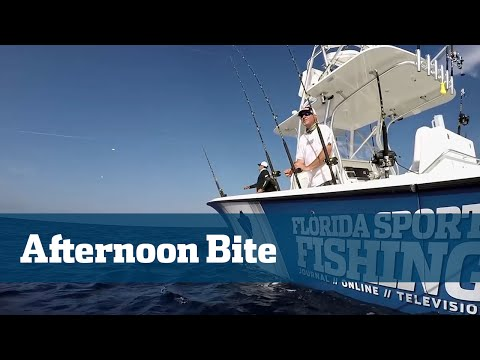 Florida Sport Fishing TV - Kite Fishing Sailfish Dolphin Kingfish Tuna Tips - Season 05 Episode 06