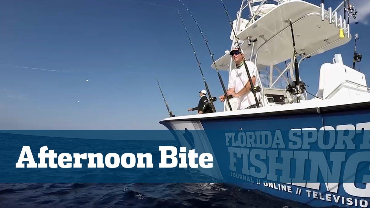 Florida sport fishing tv kite fishing sailfish dolphin for Florida sport fishing