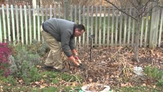 Preparing Your Garden for Winter - A Meijer Gardens Gardening Demonstration
