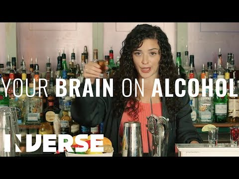A Neuroscientist Explains What Alcohol Does to Your Brain | Inverse