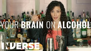A Scientist Explains What Alcohol Does to Your Brain | Inverse