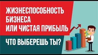 Жизнеспособность бизнеса или чистая прибыль. Что ты выберешь? | Финансовая грамотность