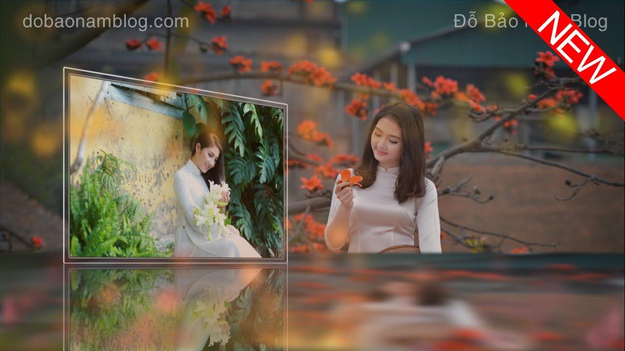Download style Proshow Producer 2019 đẹp mới nhất miễn phí hiệu ứng 3D