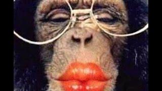 Lippen op de mijne - Drumpartij - Nick & Simon