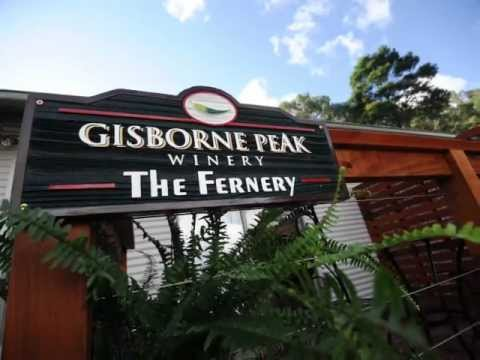 gisborne peak winery eco cottages wine accommodation. Black Bedroom Furniture Sets. Home Design Ideas