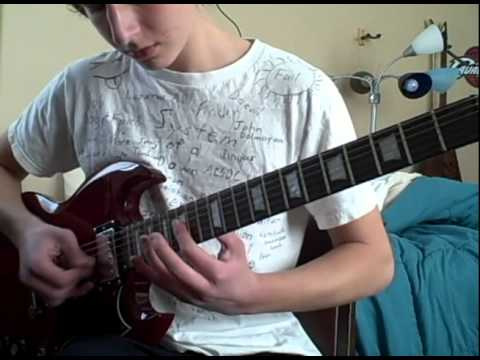 Too Many Puppies guitar cover