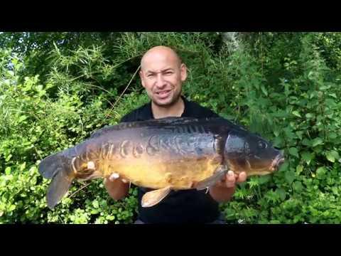 Episode 3: Bank Time - Jay Taylor Carp Fishing Blog - New Forest Carp Fishing