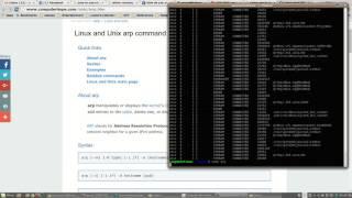 Network Tools arp