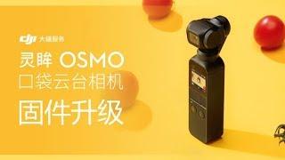 靈眸OSMO 口袋雲台相機  如何進行固件升級