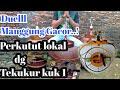Suara Pancingan Perkutut Lokal Dan Tekukur Lokal Kuk  Di Jamin Ampuh  Mp3 - Mp4 Download