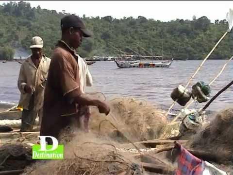 Destination Cameroon