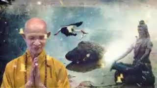 ❤3 Phương Pháp Pháp Môn Niệm Phật  ❤HT Thích Giác Hạnh ❤