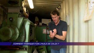 Yvelines | Comment fabrique-t-on l'huile de colza?