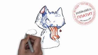 Нарисованные  кошки аниме  Как быстро и просто нарисовать карандашом лицо кошки за 23 секунды(О том как нарисовать кошку написано уже много. Но при этом всегда найдется человек, который с трудом предста..., 2014-07-21T05:14:03.000Z)
