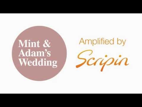 An Enchanted Wedding