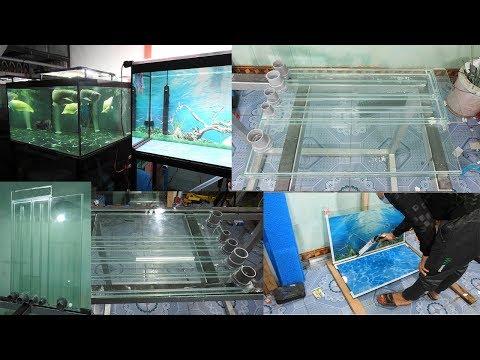 Aquarium model 16  Make an aquarium with 3 views  Flowerhorn Thailand Fish