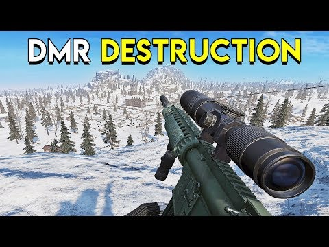 DMR Destruction! - Ring of Elysium (RoE)